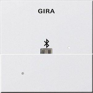 GIRA Dockingstation USB